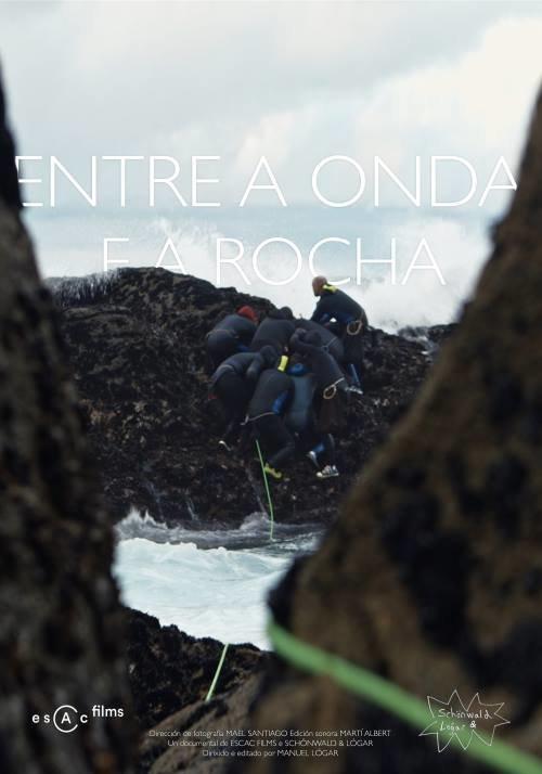 Poster de Entre a onda e a rocha