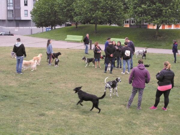 Colectivo vecina pide un canil en Parque Vioño